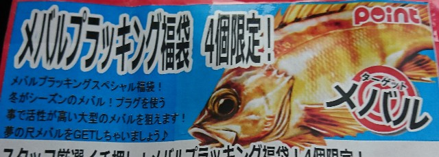 f:id:shinobulure:20190101101218j:image