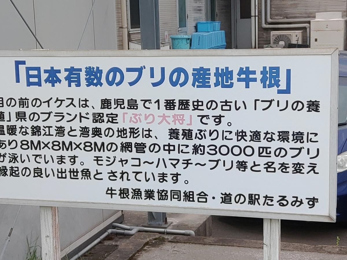 f:id:shinobulure:20201010183955j:plain
