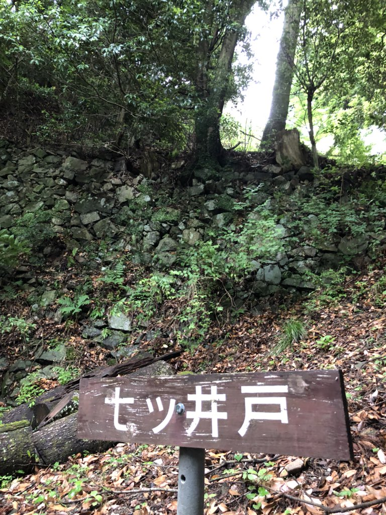 f:id:shinobutakahasi:20180602093246j:plain