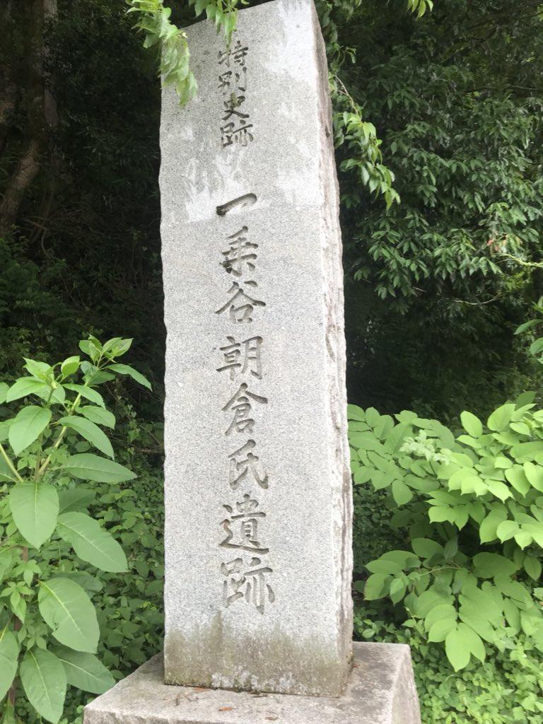 f:id:shinobutakahasi:20180612203655j:plain
