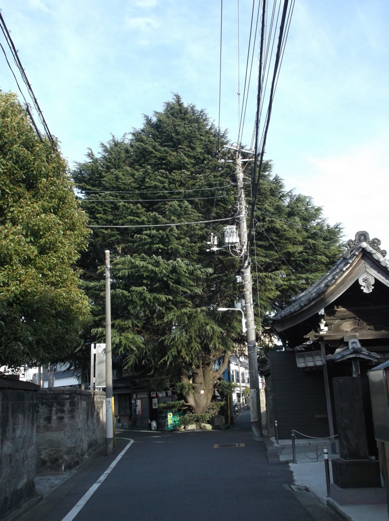 f:id:shinobutakahasi:20180613192005j:plain