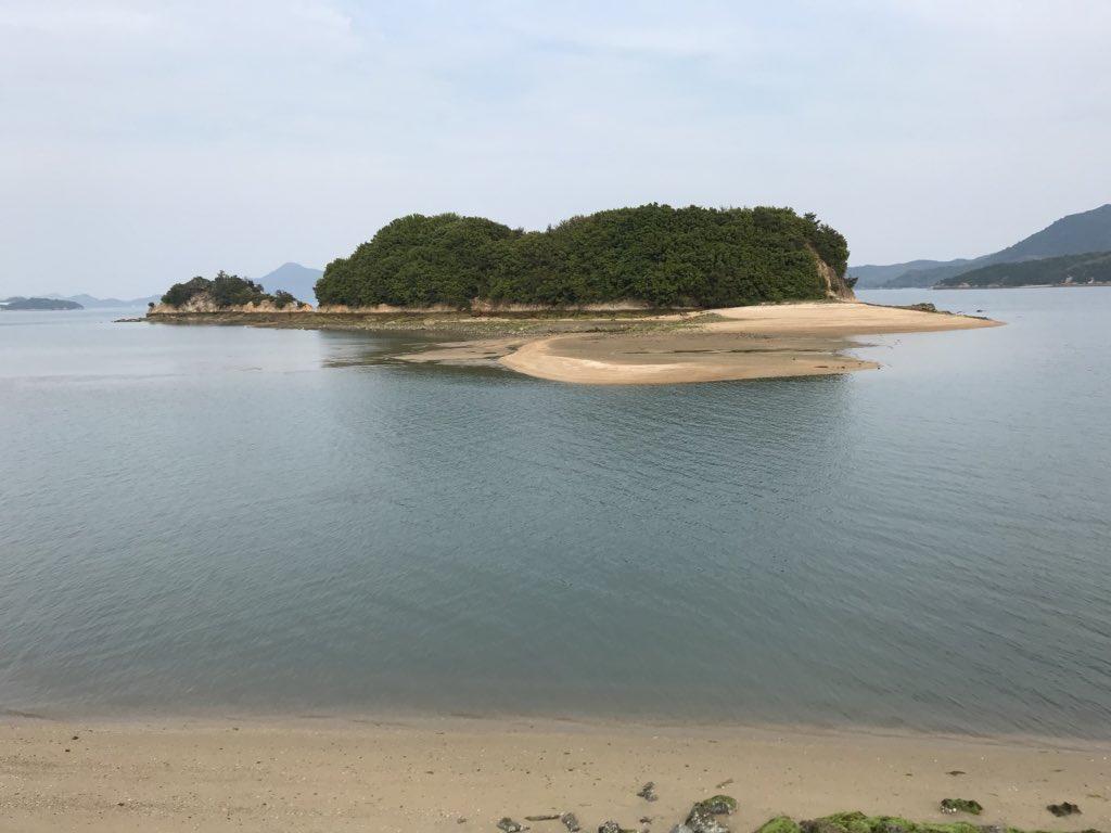 f:id:shinobutakahasi:20180626190705j:plain