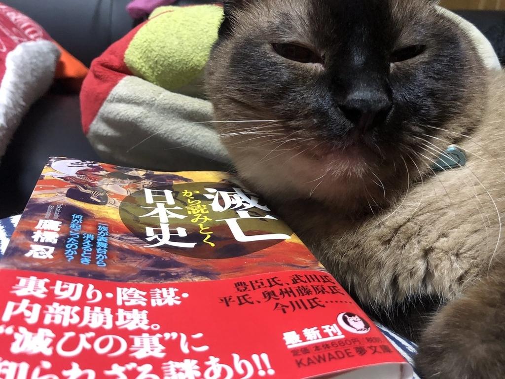 f:id:shinobutakahasi:20180922070812j:plain
