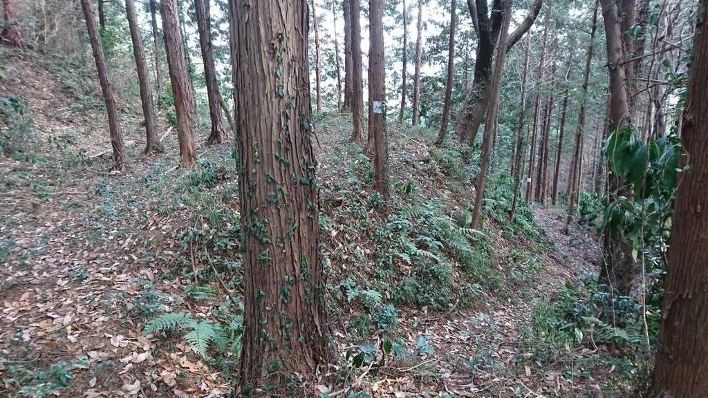 f:id:shinobutakahasi:20180930084142j:plain