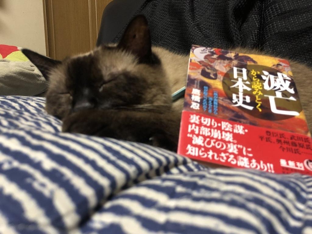 f:id:shinobutakahasi:20181008052440j:plain