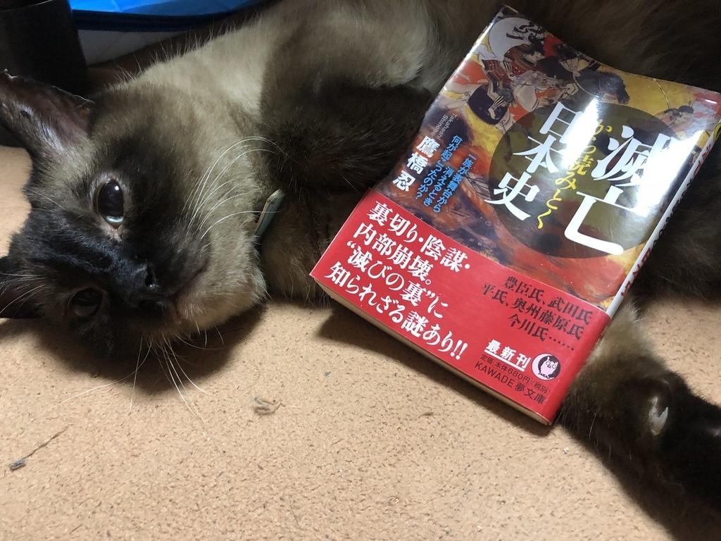 f:id:shinobutakahasi:20181013164754j:plain