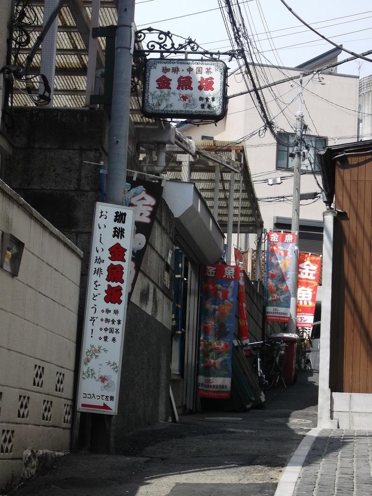 f:id:shinobutakahasi:20181014143615j:plain