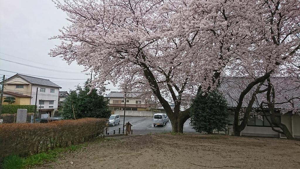 f:id:shinobutakahasi:20181019053848j:plain