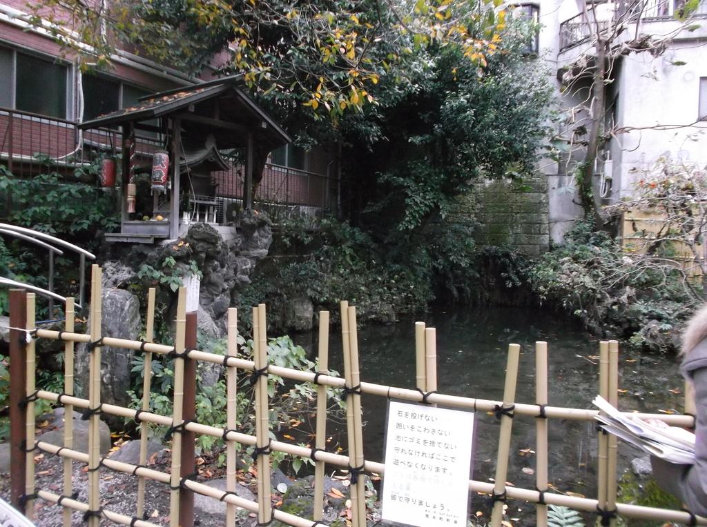 f:id:shinobutakahasi:20181101173631j:plain