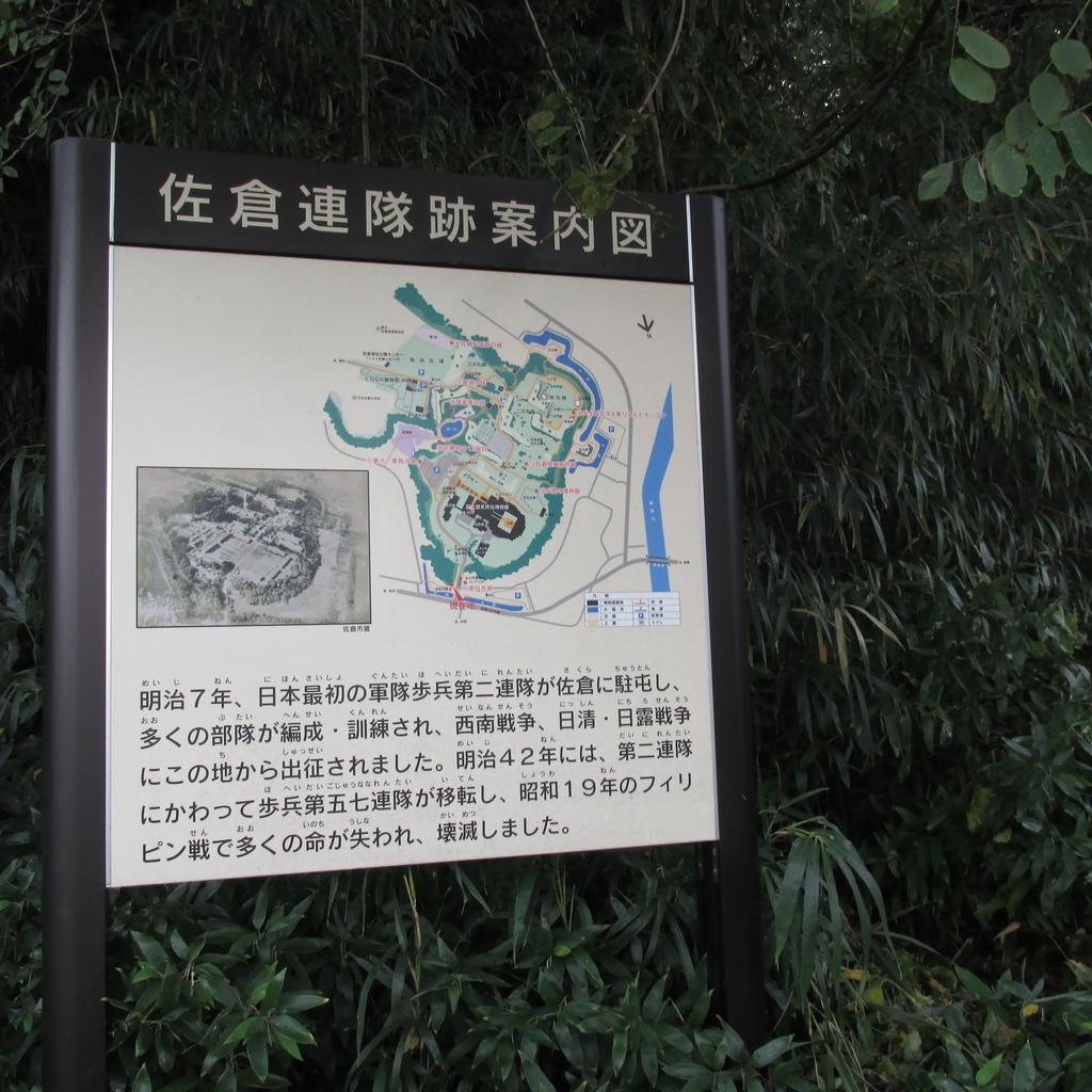 f:id:shinobutakahasi:20181116224345j:plain
