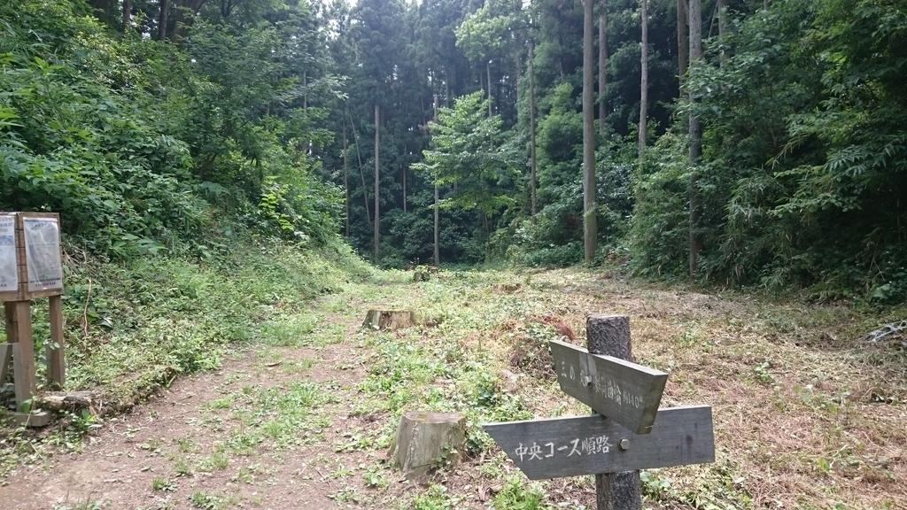 f:id:shinobutakahasi:20181204054126j:plain