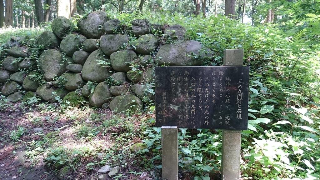 f:id:shinobutakahasi:20190110063126j:plain