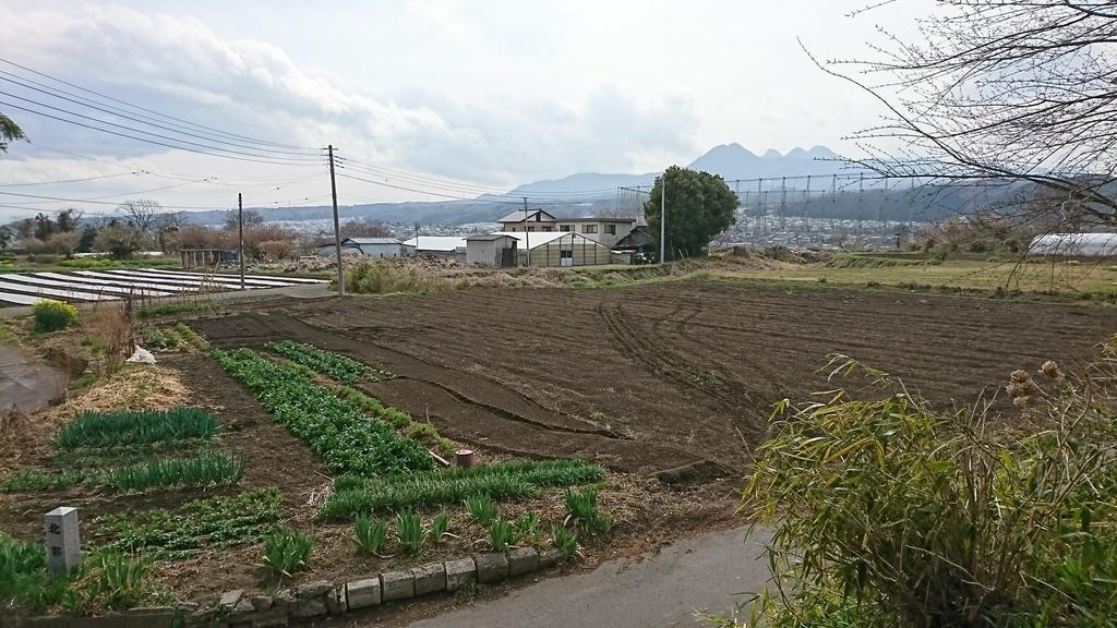 f:id:shinobutakahasi:20190211060348j:plain
