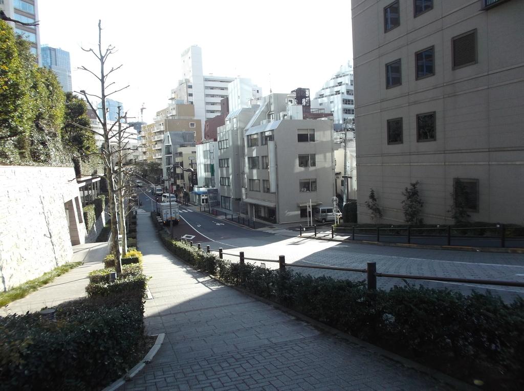 f:id:shinobutakahasi:20190221045534j:plain