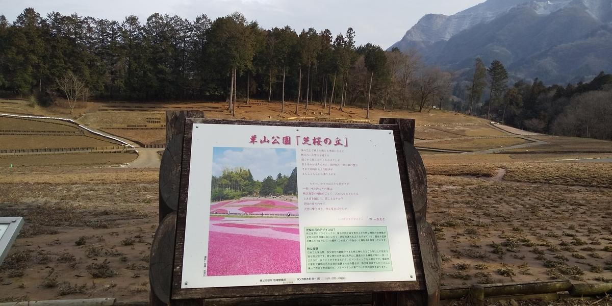 f:id:shinobutakahasi:20200319095359j:plain