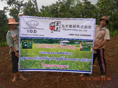 f:id:shinodafarm:20121001154640j:image