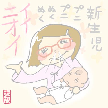新生児 プニプニぬくぬく イイニオイ 志乃