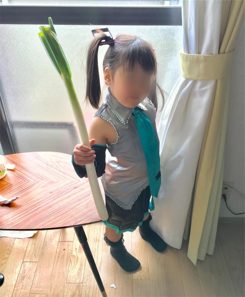 f:id:shinoegg:20170304151626j:image