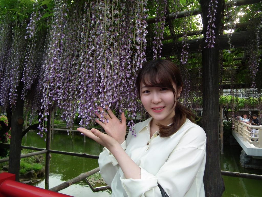 f:id:shinohara_chisaki25:20170513213351j:plain