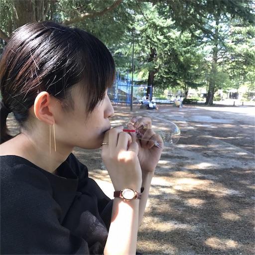 f:id:shinohiraishin:20170828223513j:image