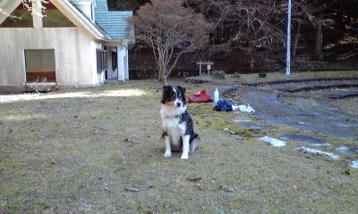 f:id:shinokawa-office:20170103152623j:plain