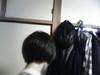 後ろからケータイカメラで撮影。洗濯物が干してあって恥ずかしいです