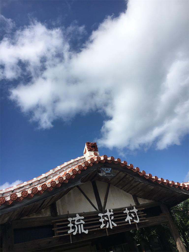 f:id:shinonomesana_job_voiceandmus436:20171122233028j:image