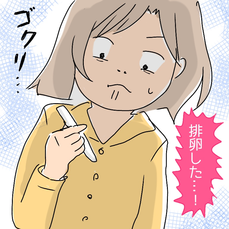 f:id:shinoshi:20190604211857j:plain