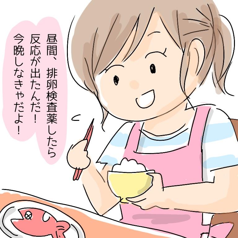 f:id:shinoshi:20190604212713j:plain