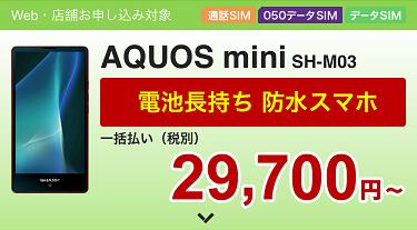 f:id:shinpoi:20170603065710p:plain