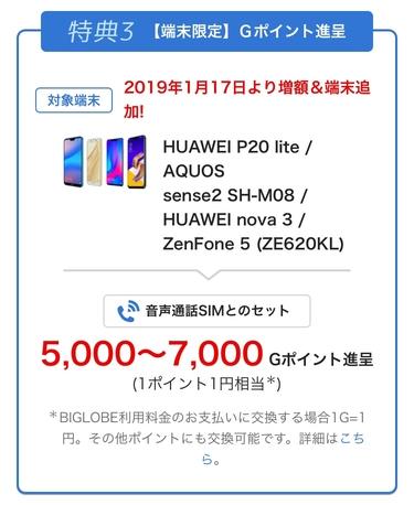 f:id:shinpoi:20190121032931j:plain