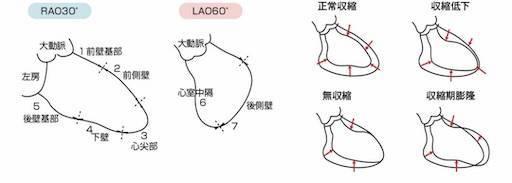 f:id:shinrihataro:20181030072959j:image