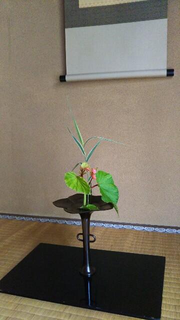 f:id:shinsaian:20200715094026j:image