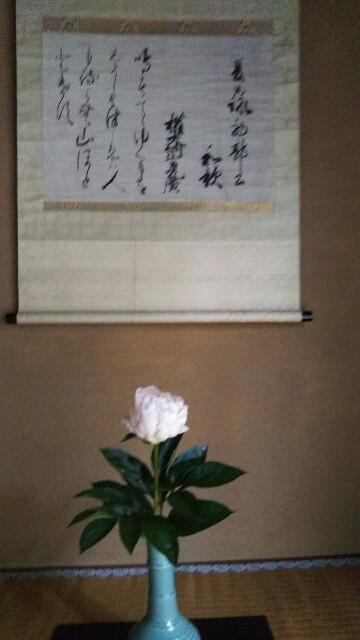 f:id:shinsaian:20210525114429j:image