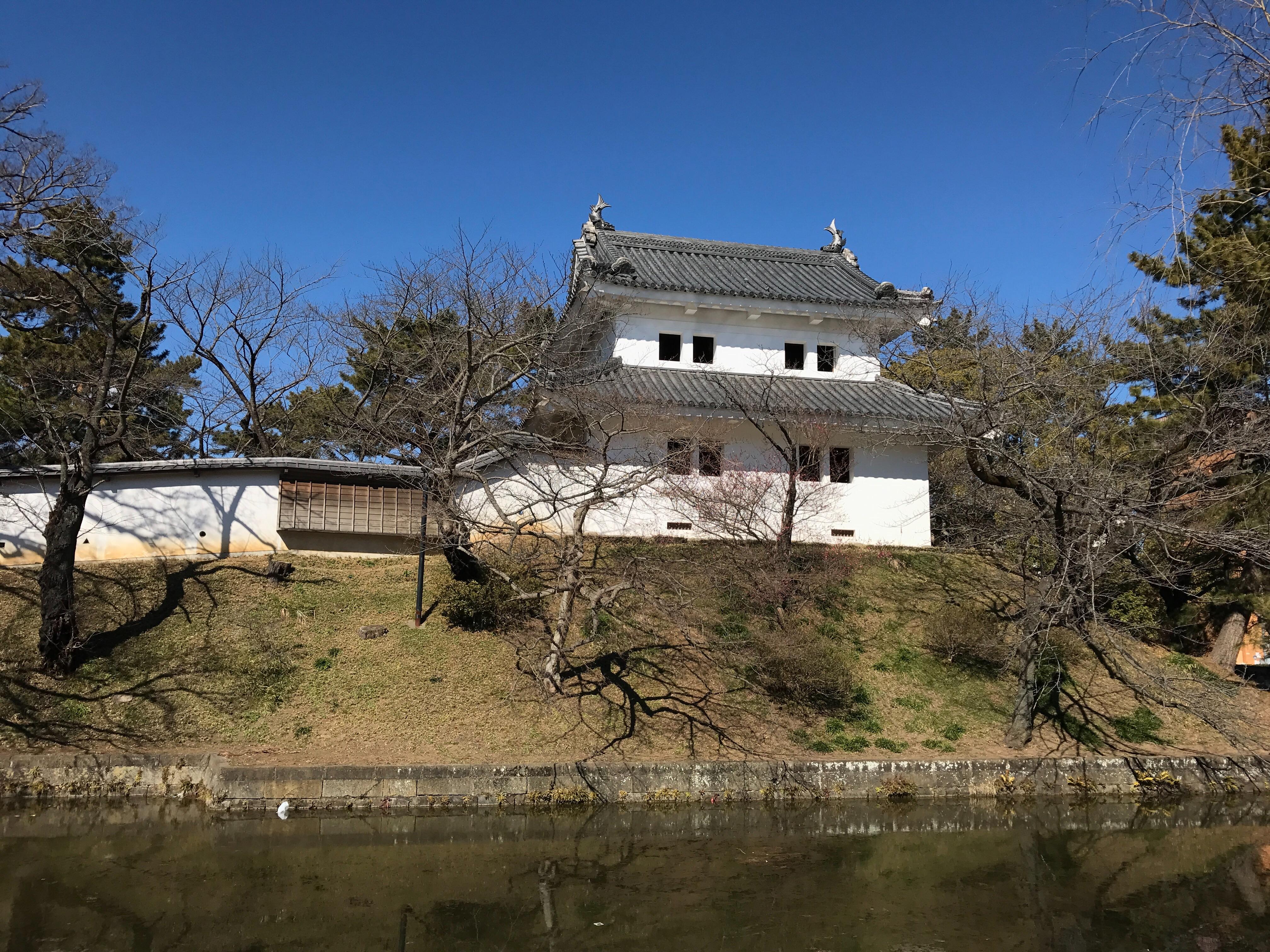 f:id:shinsaku1234t501:20170226030554j:image
