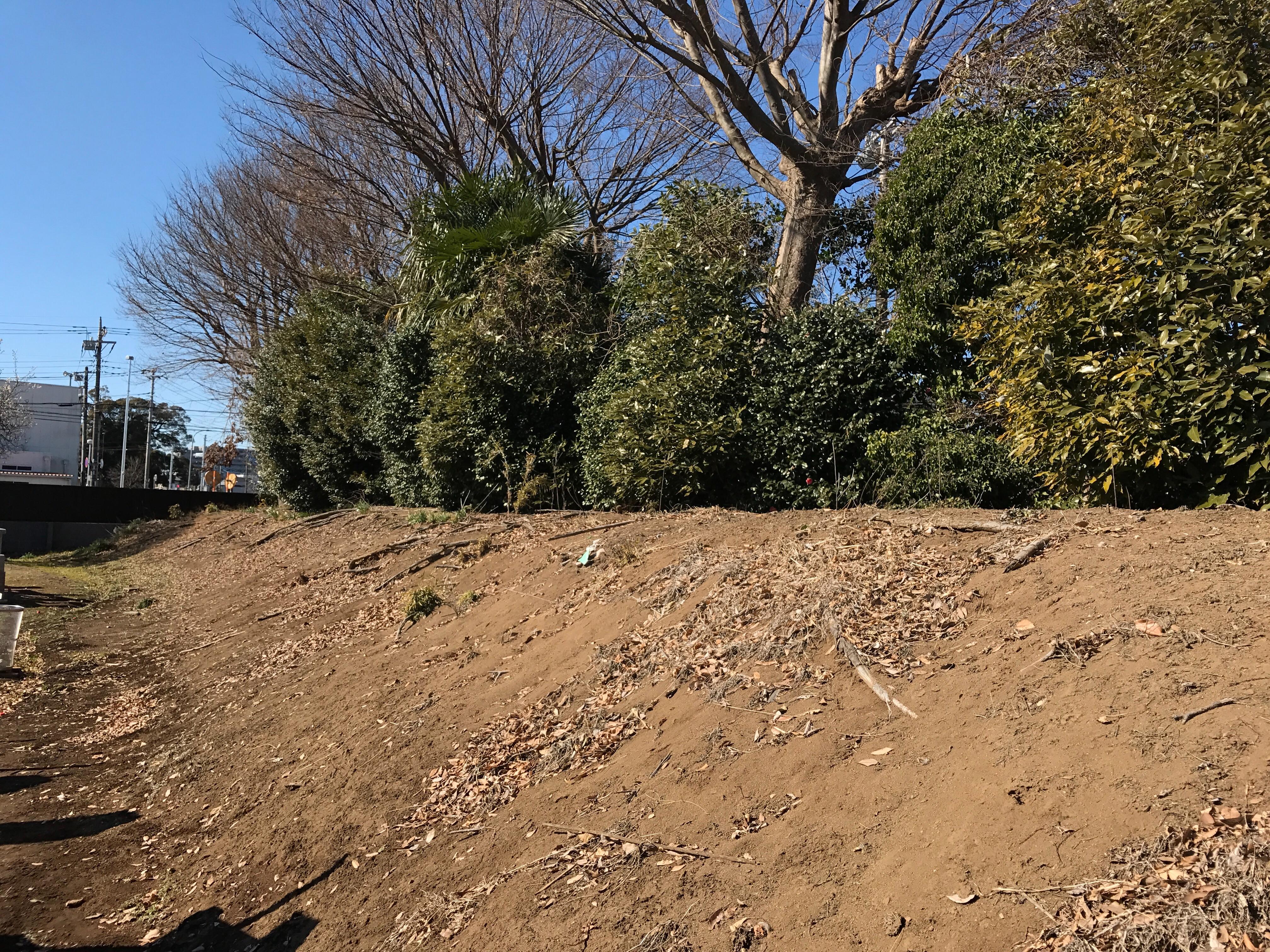 f:id:shinsaku1234t501:20170226151424j:image