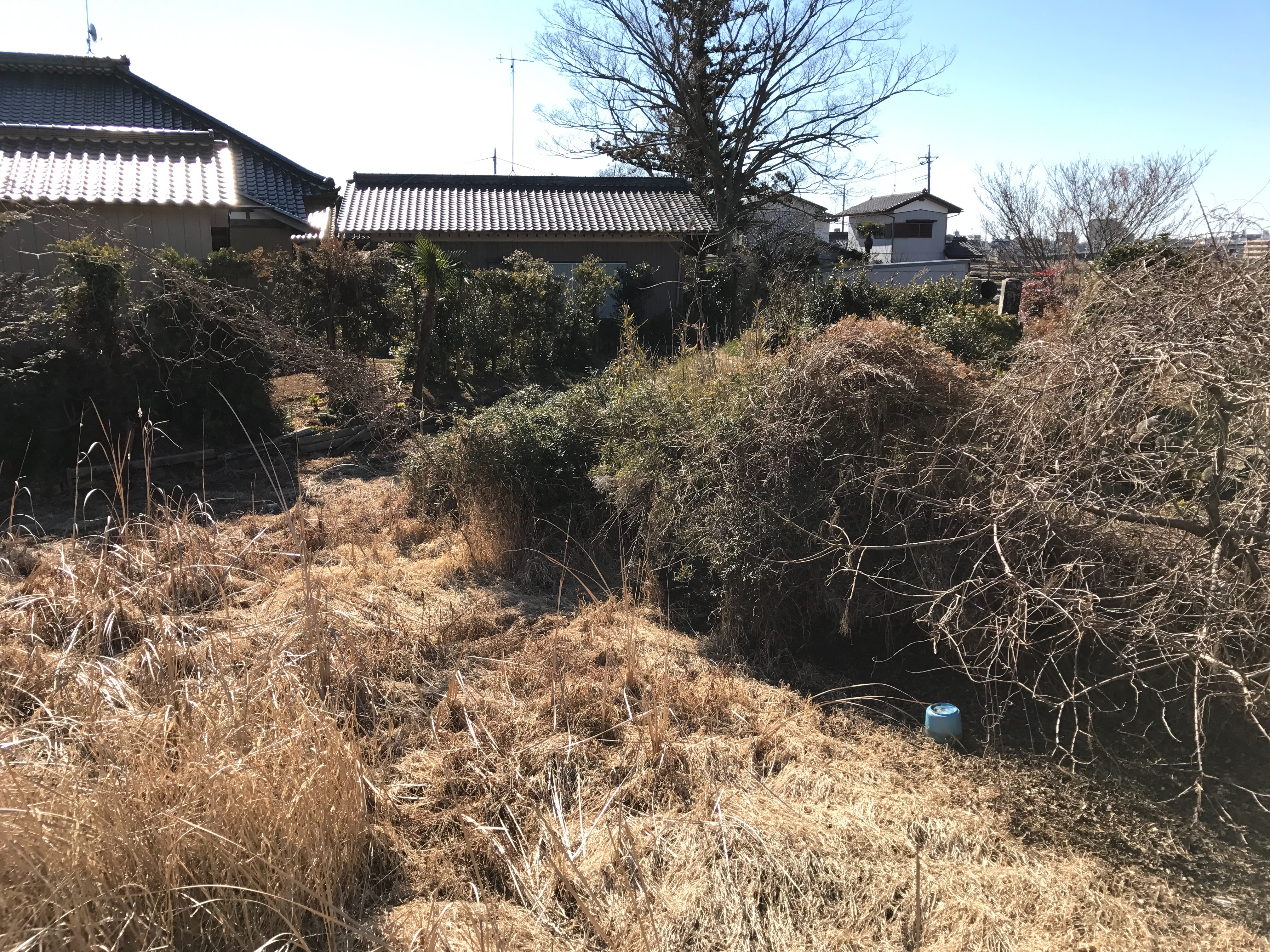 f:id:shinsaku1234t501:20170226230326j:image
