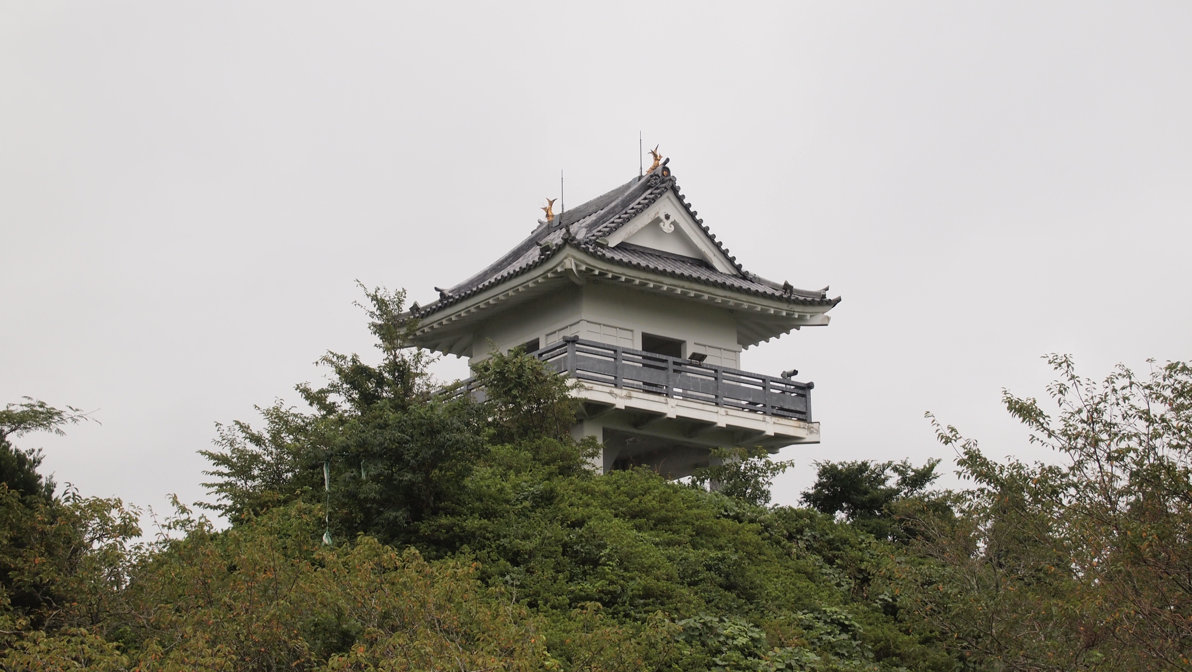 f:id:shinsaku1234t501:20170310153533j:image