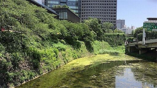 f:id:shinsaku1234t501:20170515001210j:image