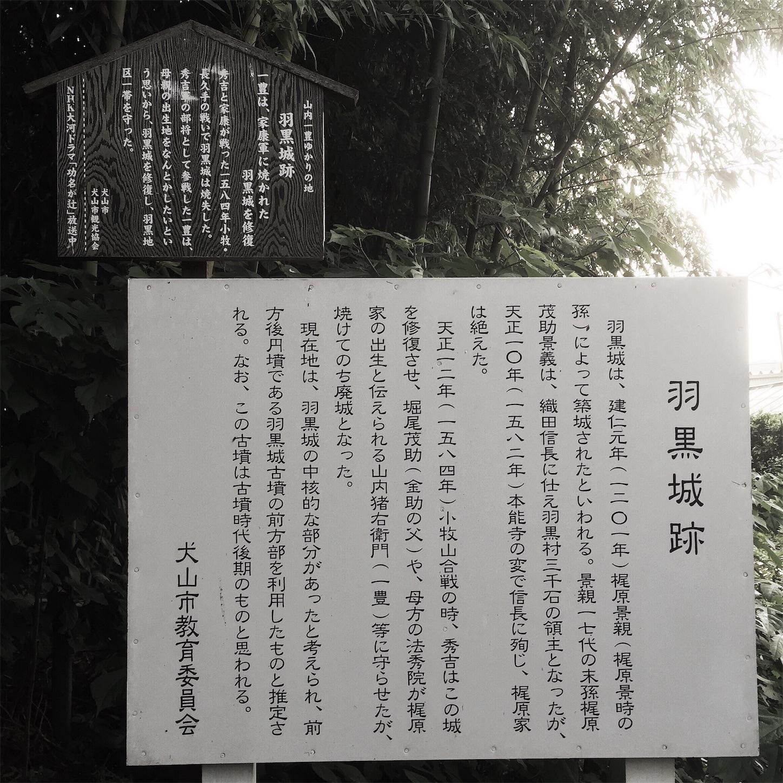 f:id:shinsaku1234t501:20170516021614j:image
