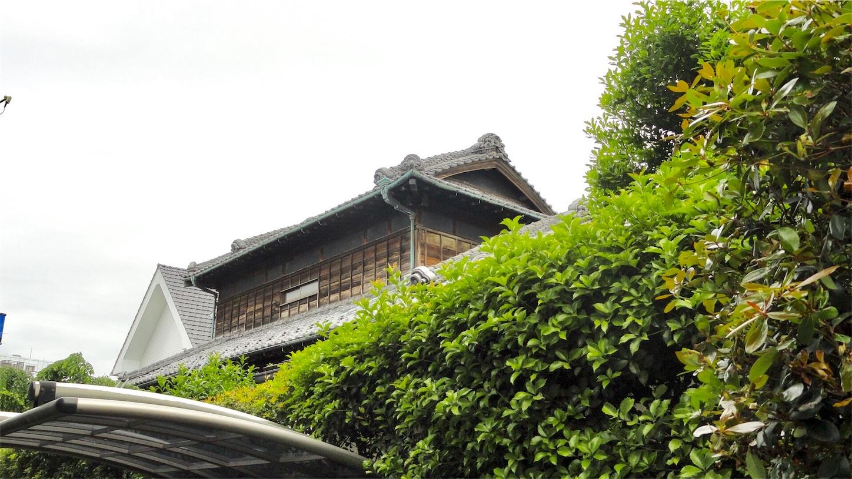 f:id:shinsaku1234t501:20170521191921j:image