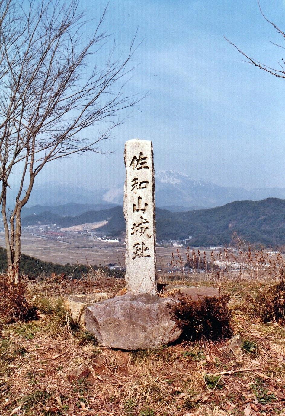 f:id:shinsaku1234t501:20170726230734j:image