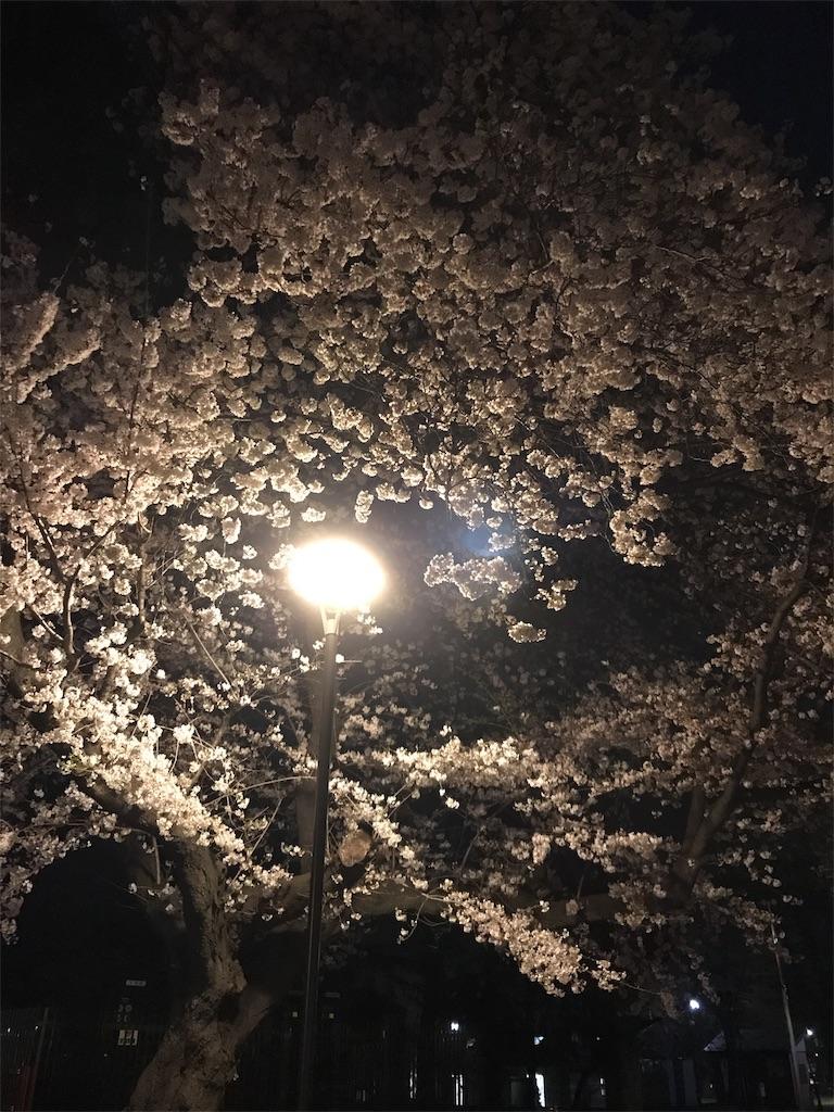 f:id:shinshin5511:20180329222136j:image