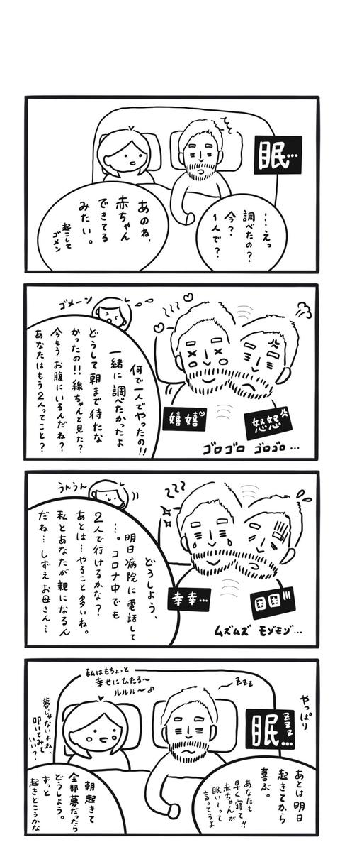 f:id:shinshizue:20200831210645j:plain