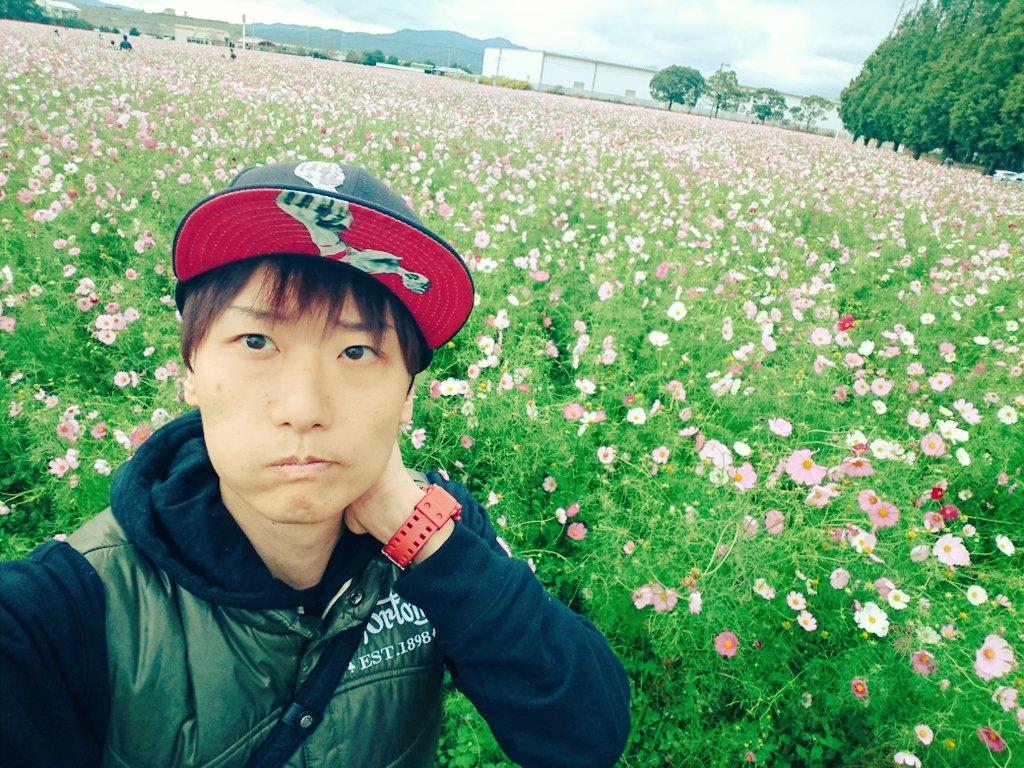 f:id:shinsukeboy:20171024000933j:plain