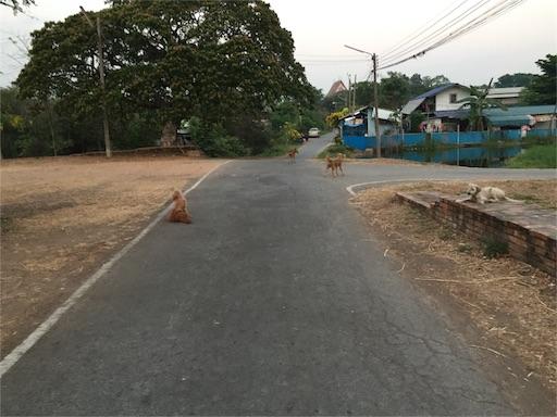 f:id:shintaman1229:20160726222243j:image