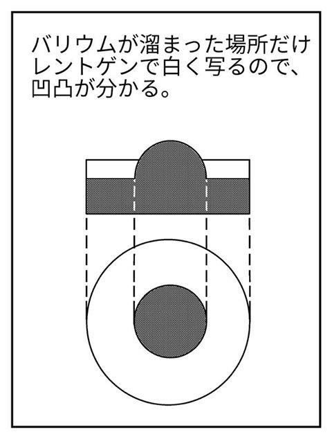 f:id:shintarok:20170613120145j:plain