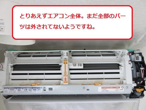 f:id:shinya-matsumura0418:20170816174719j:plain