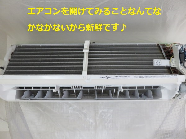 f:id:shinya-matsumura0418:20170816174733j:plain