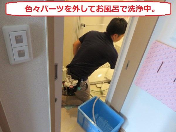 f:id:shinya-matsumura0418:20170816174746j:plain